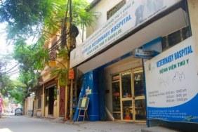 Clinique vétérinaire Asvelis à Hanoi