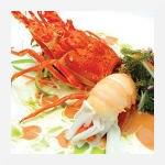 tayninh-restaurant.jpg_megavina_ZTAXZRXH.jpg