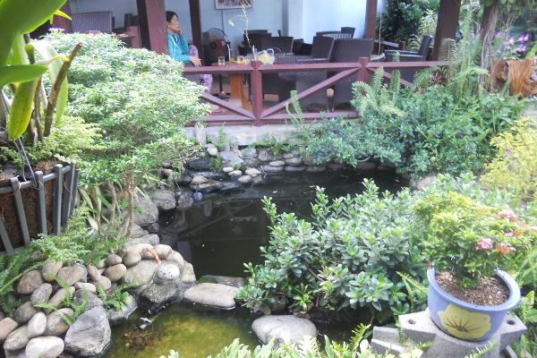 Thao Moc Garden Cafe