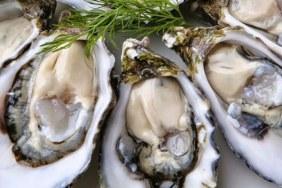 Biological Vietnam Seafoods