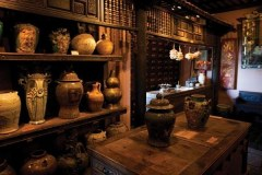 Museum of traditional vietnamese medicine