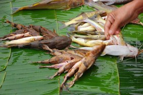 Mekong Delta 3 days Tour with Phnom Penh exit