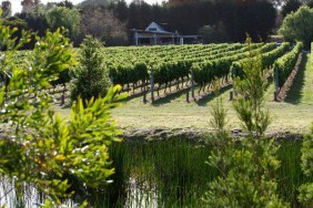 Merricks Creek Wines Mornington