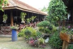 Thảo Mộc Garden Café