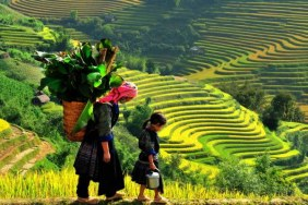 2-Day Bac Ha Market and Sapa Trekking Tour